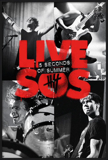 5 Seconds of Summer - Live SOS Plakát