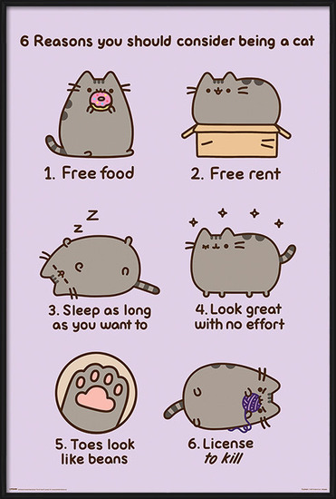 Pusheen - Reasons to be a Cat Plakát