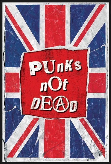 Punk not death Plakát