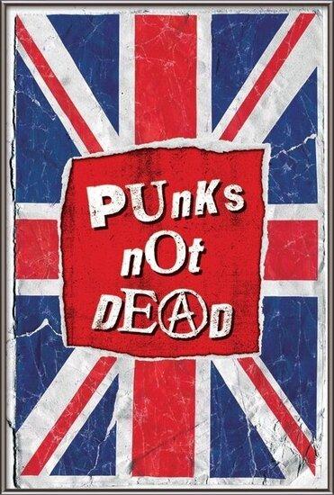 Punk not death Plakát
